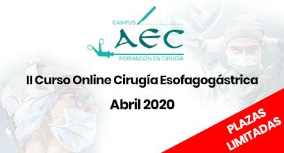 II Curso Online cirugía Esofagogástrica 2020