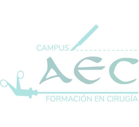 LXXIII  DSTC  Alicante 2019