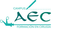 Aviso Legal | aec-campus.es